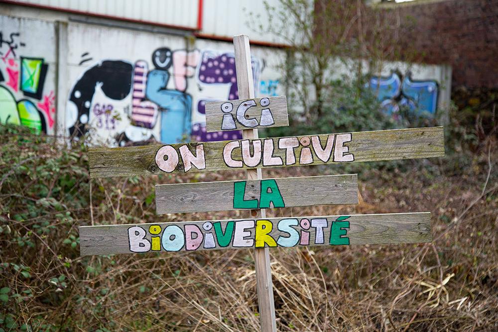 Agriculture urbaine - Biodiversité